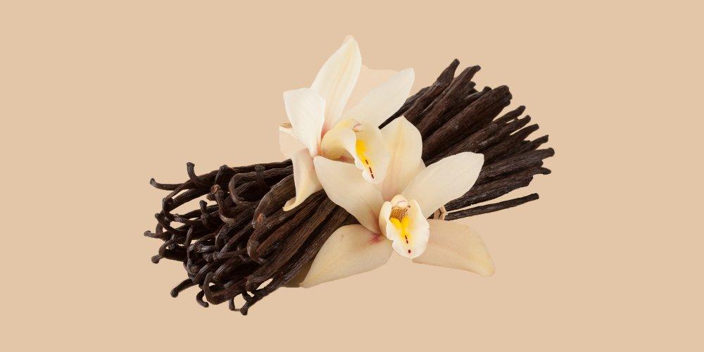 Focus sur l'utilisation des gousses de vanille