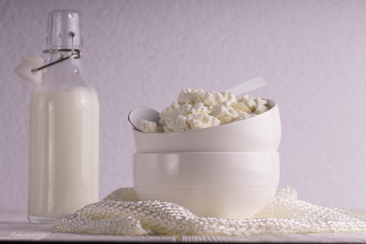 lait de soja et fromages blancs